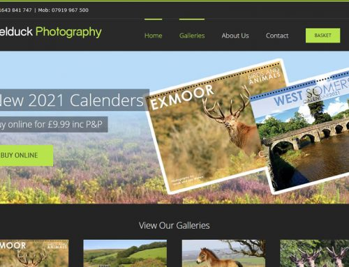 eCommerce Photography Website Designers in Minehead